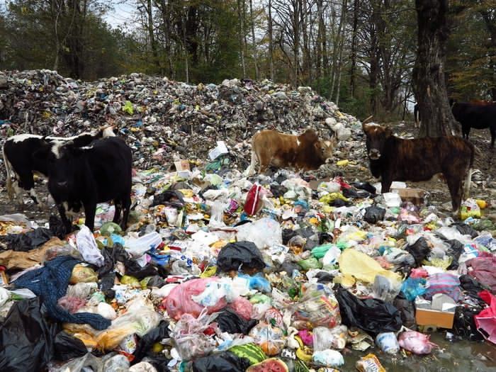 زباله ها در شهرستان اسفراین بهداشتی دفن نمی شود