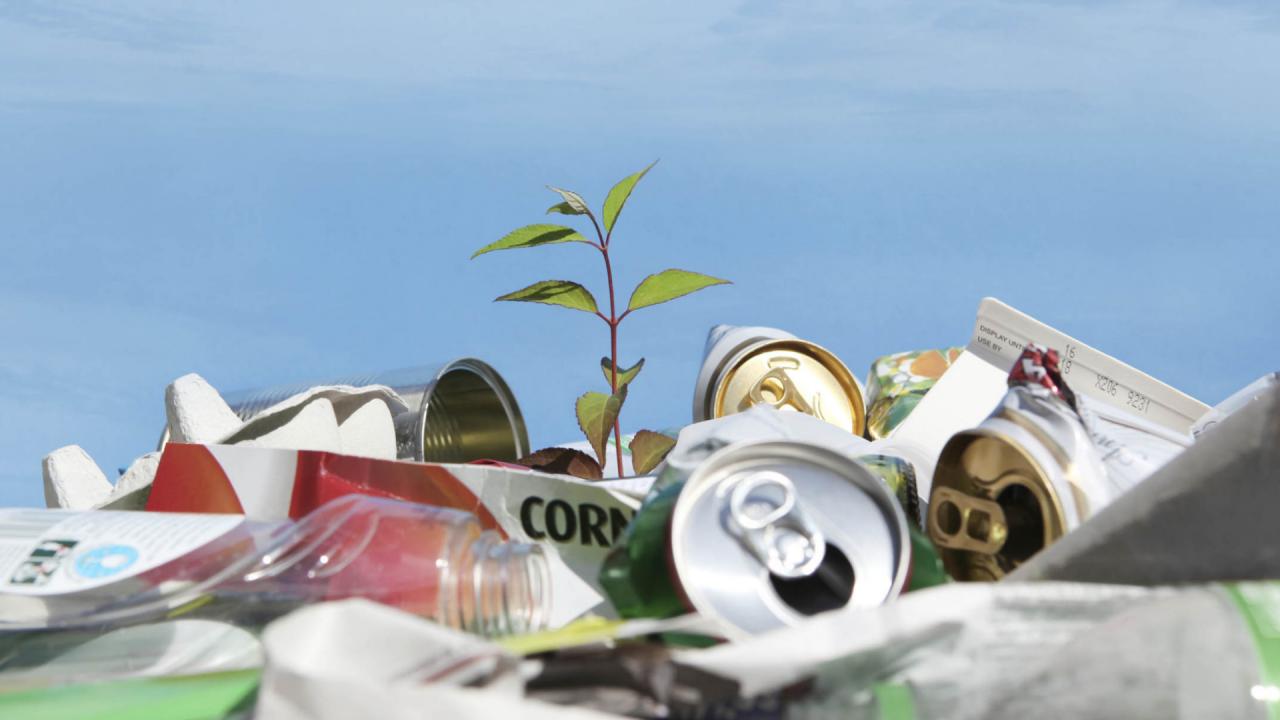 بازیافت چگونه باعث نجات زمین میشود